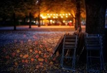Lantern Festival-image