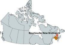 Where is Bouctouche New Brunswick?