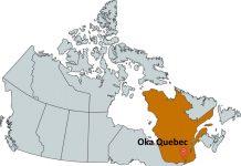 Where is Oka Quebec?