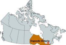 Where is Osgoode Ontario?