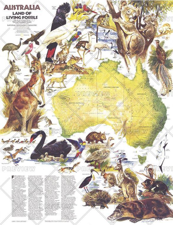 Australia Land Of Living Fossils Published 1979 Map