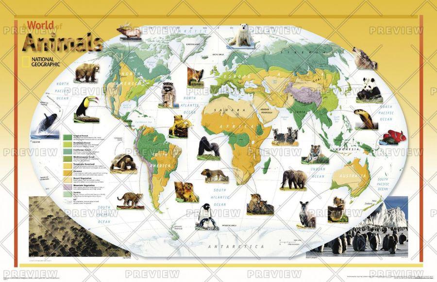 World Of Animals Published 2004 Map